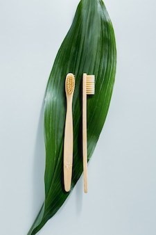 Bamboo wooden toothbrushes on pastel