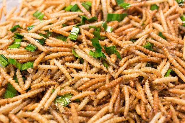 Bamboo worm fried fried insects are a high protein foods