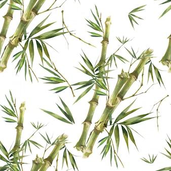 Bambooの葉、白い背景の上のシームレスなパターンの水彩イラスト