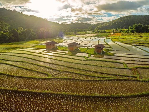 Рисовая терраса ban mae klang luang на севере таиланда в дневное время чиангмай, таиланд