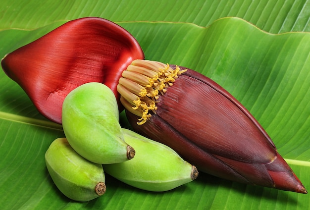 바나나, 바나나 꽃은 태국에서 맛있는 야채로 먹습니다. 과일, 꽃.