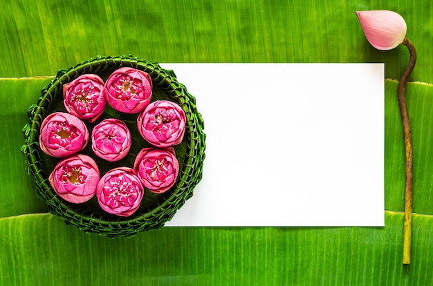 Banana leaf krathong decorates with pink lotus flowers for thailand full moon or loy krathong festival with space for text.