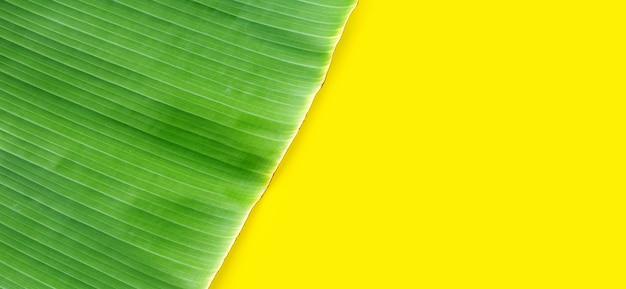 黄色の背景にバナナの葉。