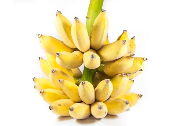 흰색 바탕에 바나나입니다.