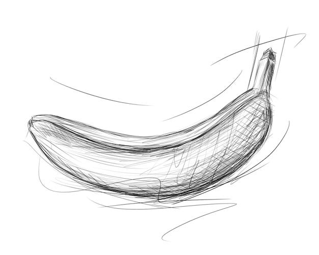바나나 스케치. 낙서 스타일의 손으로 그린 과일 그림. 연필 드로잉입니다.