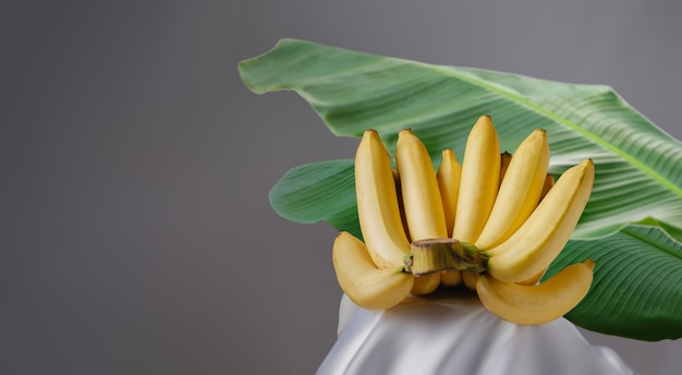 Banana with leaves on gray background