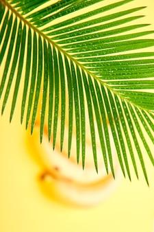 ヤシの葉とバナナ