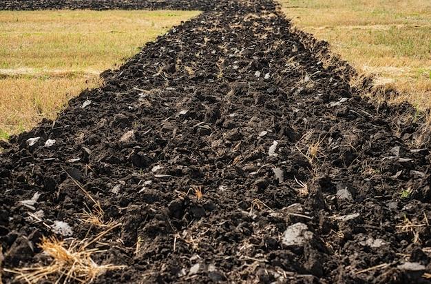 バンドは植えるために黒い地球を掘りました。土工事、農業