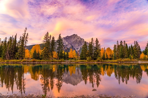 Banff national park beautiful natural scenery at dawn in autumn foliage season fiery pink clouds