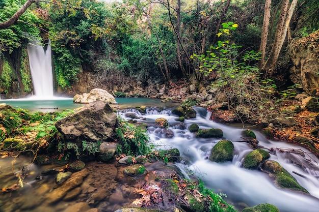 滝baniasの風景