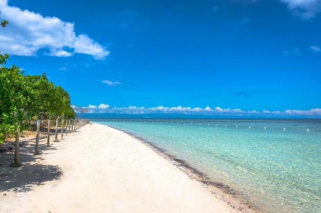 白い砂浜と澄んだきれいな水でフィリピン海の土手
