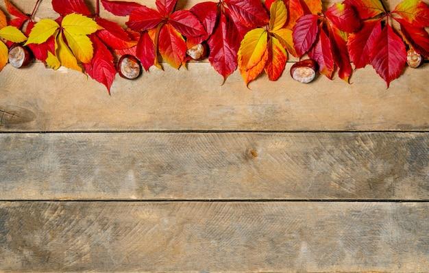 バナー。木製の秋の明るい黄赤色の葉
