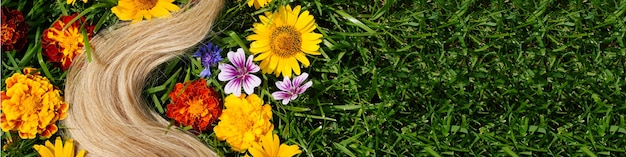Banner a lock of blond hair among the flowers on the green grass hair health concept natural ingredi...