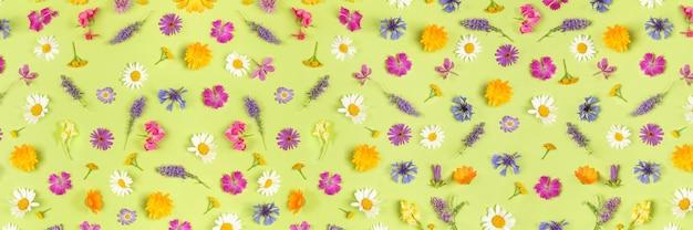 Баннер с красочными полевыми цветами на зеленом фоне, в качестве фона или текстуры. весенние, летние натуральные обои для вашего дизайна. вид сверху плоская планировка.
