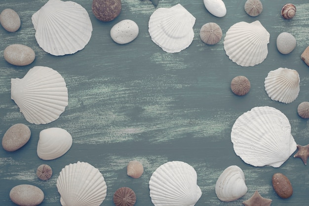 Banner natural wooden retro sea shell stone background.