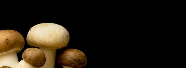 Баннер фото грибов на черном фоне, копировальное пространство, фото концепции органических и натуральных ингредиентов