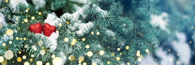 배너. 발렌타인 데이 카드. 눈과 그들에 두 개의 빨간색 하트와 크리스마스 나무의 가지.