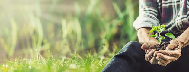 Banner view of a man sitting on a grass before putting a seedling into the ground.