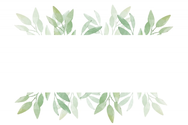Banner with green leaves on a white background. greeting card template design.