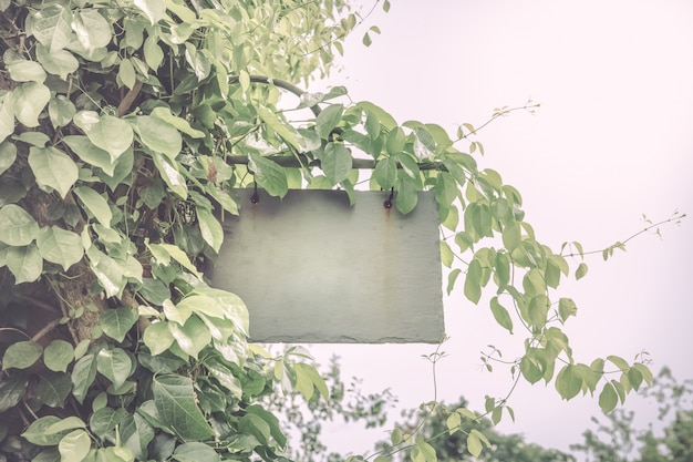 Banner with leaves vintage style