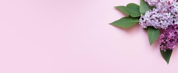 Баннер с сиреневыми цветами и листьями на розовом фоне