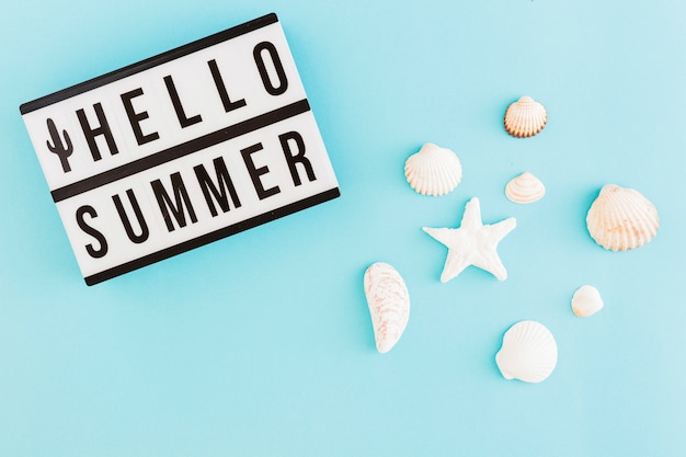 Banner with summer text and shells on light background