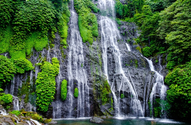 Banyumala twin waterfall in mountain slope in bali. jungle waterfall cascade in tropical rainforest with rock and turquoise blue pond.
