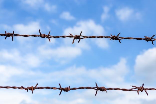 자유 개념에 대 한 푸른 하늘 배경에 미늘
