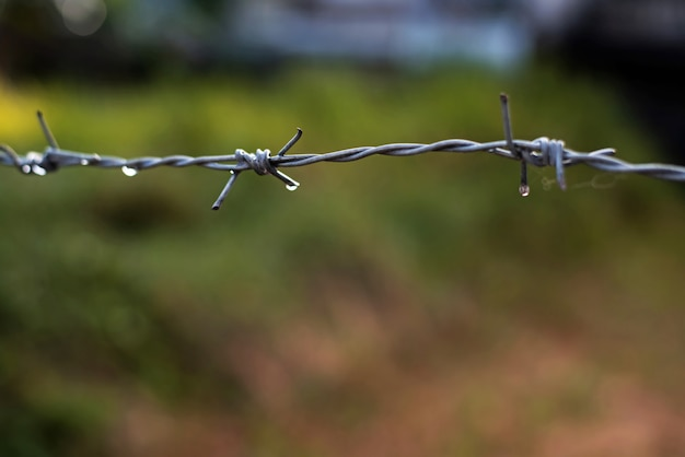 Barb wire with water drops,after rain,blurry light around