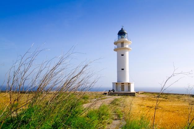 Barbaria berberia cape lighthouse formentera meadow