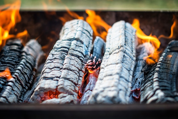 Barbecue grill flame, hot grill with burning pine cone, outdoors. selective focus.