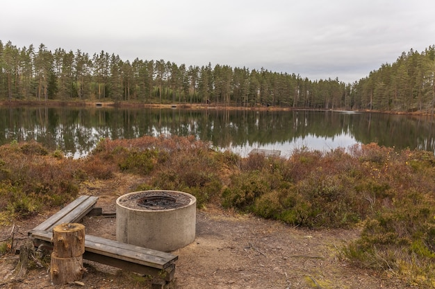 Barbecue grill near lake in the forest, grill place near swedish lake