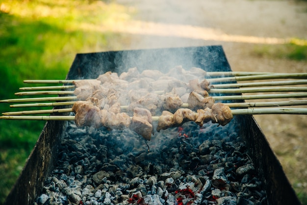 Barbecue skewered beef kebabs on the flaming grill close-up.