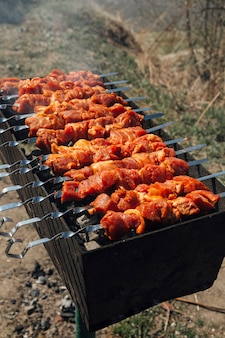 Barbecue on skewers on the grill