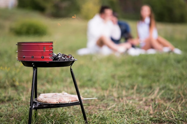 Barbecue with defocused friends on grass