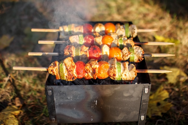 고기와 야채가 심어진 막대기가 달린 바베큐