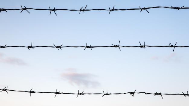 푸른 하늘 근접 촬영에 대 한 가시 철사입니다. 폐쇄된 지역의 울타리 또는 울타리.
