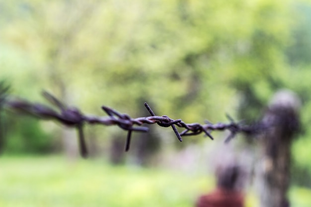 Barbed wire. a barbed wire on a fence with wooden parts