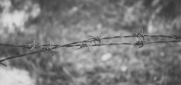 有刺鉄線。心配の概念を感じるフェンスに有刺鉄線