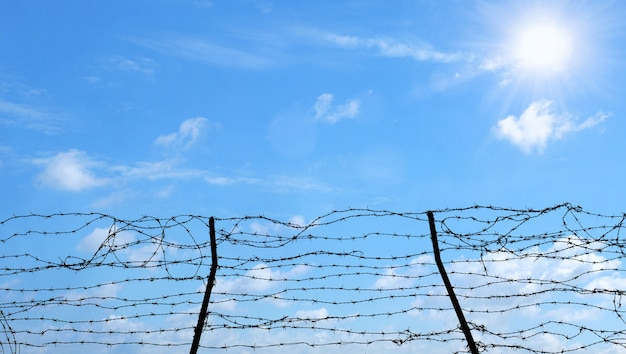 Barbed wire on blue sky background, freedom, prison and hope concept.