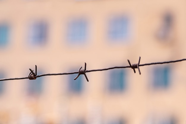 Barbed wire on country border