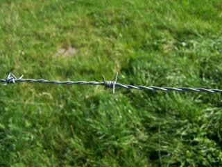 Barbed wire, defend