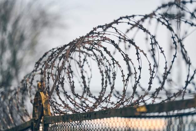 Barbed wire on fence of restricted area