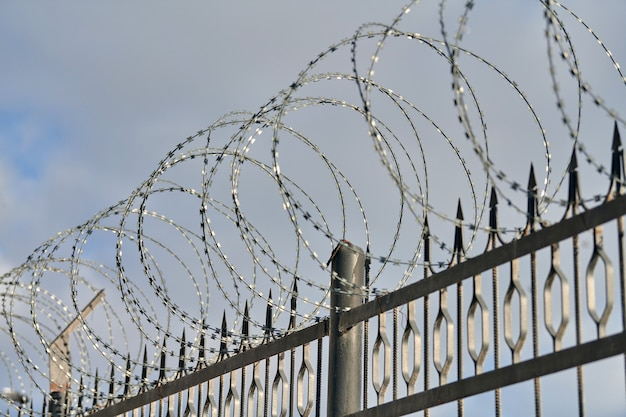 Barbed wire on fence, steel grating fence, metal fence wire. coiled razor wire with sharp steel barbs on top of wire mesh perimeter fence