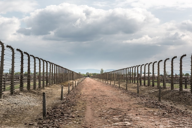 Barbed wire fence in two rows, auschwitz ii