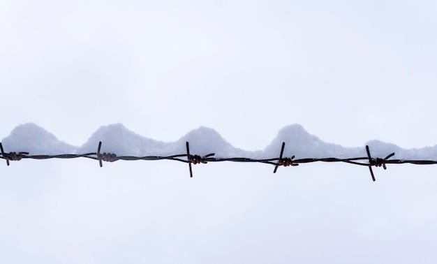 白い冬の空を背景に雪の下で冬の有刺鉄線。有刺鉄線最小限