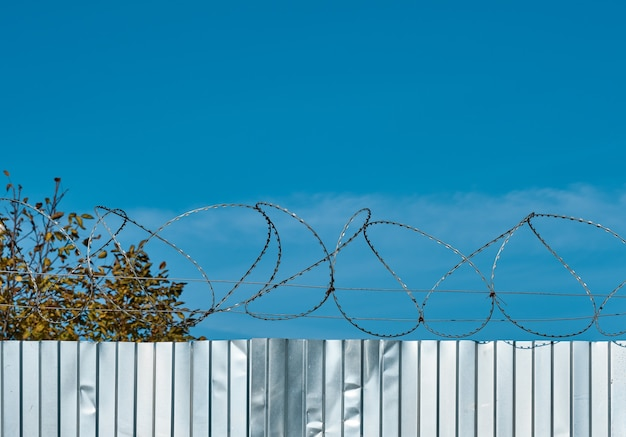 Barbed wire on a metal fence against a blue sky.