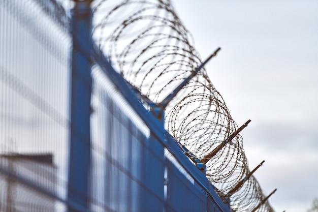 Колючая проволока на синем заборе запретной зоны
