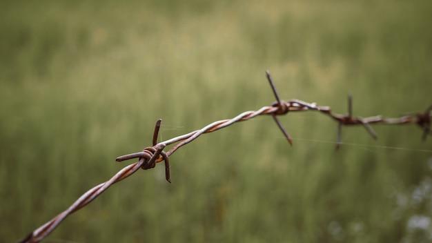 フェンスの上の有刺鉄線