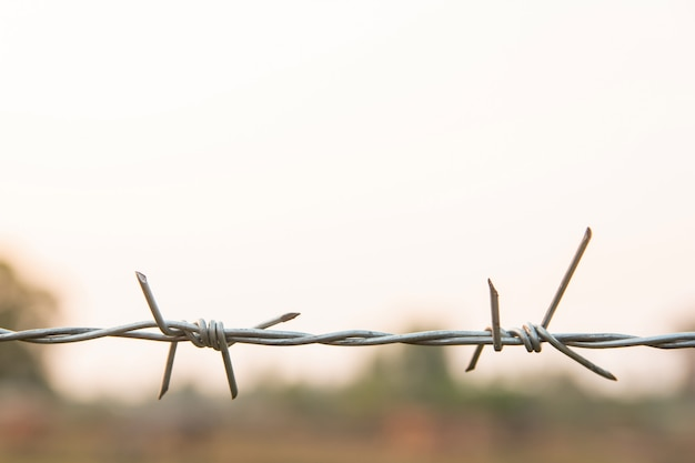 Barbed wire with blur nature background with copy space